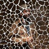 SAMIYAM/ANIMALS HAVE FEELINGS