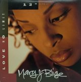 MARY J BLIGE/LOVE NO LIMIT