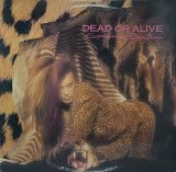 DEAD OR ALIVE/SOPHISTICATED BOOM BOOM