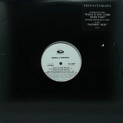 画像1: TRINA & TAMARA/WHAT'D YOU COME HERE FOR?-TRACKMASTERS REMIX-