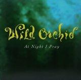 WILD ORCHID/AT NIGHT I PRAY