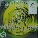 LITTLE BIG BEE/ONLY HAPPENS REMIXES