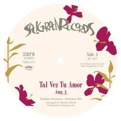 画像1: Amy A/Tal Vez Tu Amor/Mi Rumba Llegó