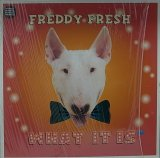 FREDDY FRESH/WHAT IT IS