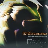 ANANDA PROJECT/CAN YOU FIND THE HEART
