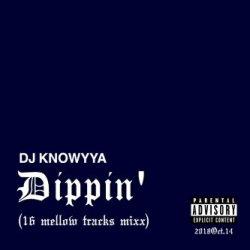 画像1: DJ KNOWYYA/DIPPIN' (16 mellow traks mixx)