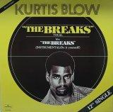 KURTIS BLOW/THE BREAKS