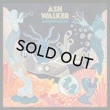 ASH WALKER/AQUAMARINE