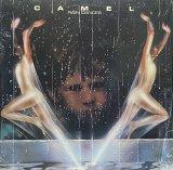 CAMEL/RAIN DANCES